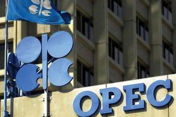 OPEC'te deprem, Katar birlikten çıkıyor