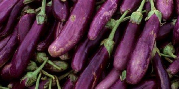 İran'da gökyüzünden patlıcan yağdı